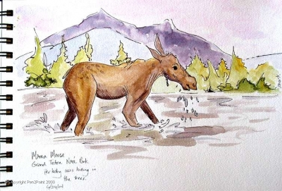 Sketching with a few other folks from a weekend drawing workshop at the Teton Science School – we looked across the stream and there was a moose and her baby. We watched them for nearly an hour!